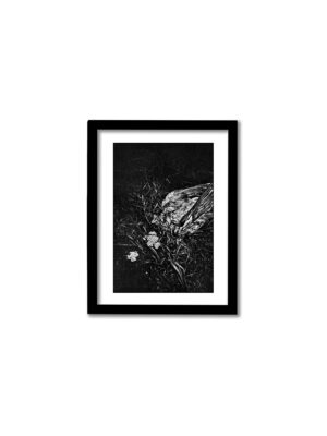Enskede Fågel – 13x18cm