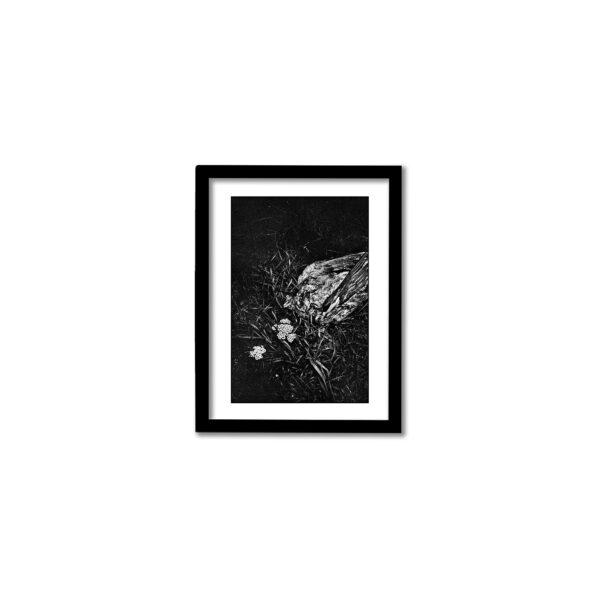 Signerad fine art print från Enskede 2020. Högkvalitativ fotokonst.